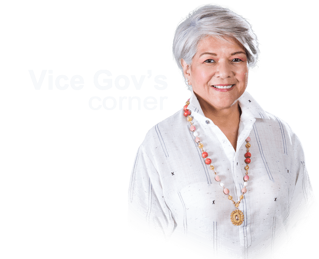 vice governor